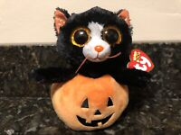 NEW IN HAND 2019 MAGGIE THE BEAUTIFUL  WOLF BEANIE BOO GREAT WOLF LODGE EXC 6 IN