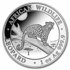 SOMALIE 100 Shillings Argent 1 Once Léopard 2021 - Wildlife