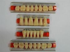 HALLOWEEN PROP - Full Set of Dental Quality Human Resin Teeth for Prop Building!