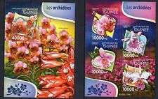 Guinee 2015 - Orchids Flowers Flora  Nature  - postage stamps MNH** F104