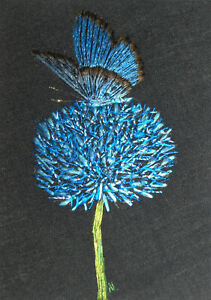"""ACEO Original """"Blue Butterfly and Cornflower"""" Silk Hand Embroidery - A Lobban"""