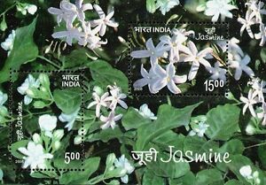 India Jasmine 2008 Plant Floral Flower (ms) MNH *unusual Smell Scented Fragrance
