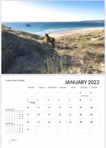 Wall Calendar 2022 - Jersey Adventures with Cat Tiger - Early bird price!