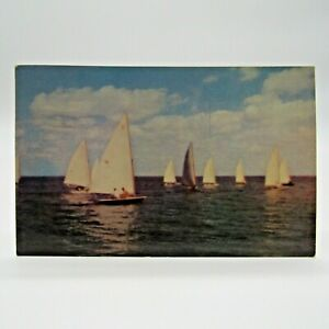 Postcard Vintage 1955 Sailboats Sailing Scence Stone Harbor New Jersey