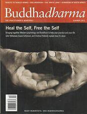 Buddha Dharma Magazine Self Healing The White Lama South Africa Buddhism 2012