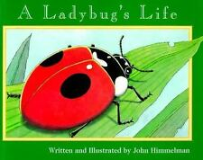 A Ladybug's Life Nature Upclose Paperback
