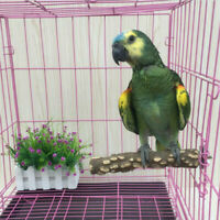 Pet Bird Cage Perch Stand Platform Chew Toy Paw Grinding For Parrot Parakeet Kit