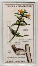 Yellow Rattle Hemi-Parasitic Herbaceous Annual Plant 90+ Y/O Trade Ad Card