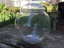 Round Glass Bowl Apothecary Terrarium Fish Bowl with Lid