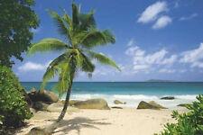 PALM BEACH - TROPICAL LANDSCAPE POSTER 24x36 - OCEAN NATURE 2116