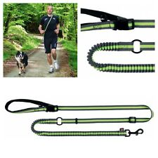Dog Activity Jogging Lead | Running Lead With Shock Absorber For Dogs Green Grey