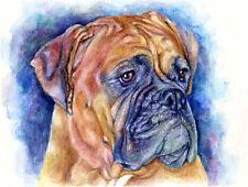 artav Bull Mastiff Art Print of Original Watercolor