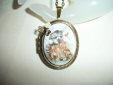 RACOON & DRAGONFLY  NECKLACE PENDANT PORCELAIN CAMEO PICTURE LOCKET 30x40mm OOAK