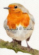 "ACEO 'Little Robin' Bird  Print of Original Watercolour 2.5"" X 3.5"" By E.Wardle"