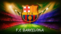 "F.C Barcelona!  Canvas PICTURE CANVAS WALL ART ""20X30"""