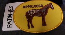 Vintage APPALOOSA HORSE - Applique Patch - MINT