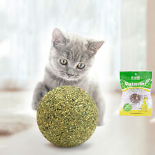 Catnip Game Play Mint Ball Pet Kitten Toy Coated Cat Toys Nature Grasping Health