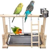 Parrot Play Stand Bird Playground Wood Perch Gym Playpen Ladder With Feeder US