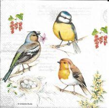 Lot de 2 Serviettes en papier Oiseaux Decoupage Collage Decopatch