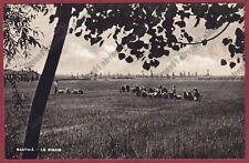 MONDINE 140 SANTHIÀ Vercelli - MONDARISO RISO RISAIA Cartolina 1942 REAL PHOTO