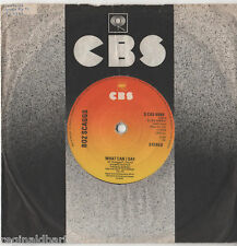 "Boz Scaggs - What Can i Say 7"" Single 1976"