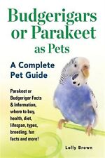 Parakeet Races and Other Stories: a memoir