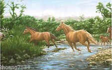 Running Horses Mountain River Wildlife Lodge Cabin Nature Wall paper Border