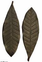 "Set of 2 Cast Iron Pottery Barn Leaf Candle Holder Trays Bronze Finish 14.5"" L"