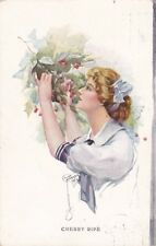 Artist Signed  COURT BARBER -- Cherry Ripe, 1915 postcard