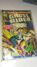 Ghost Rider #53 (Feb 1981, Marvel) NM