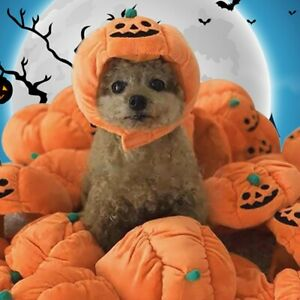 Pet Halloween Pumpkin Hat Dog Puppy Cats Plush Hat for Cosplay Costume Party UK