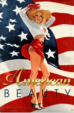 American Beauty Greg Hildebrandt Pin Up Usa Flag Metal Sign