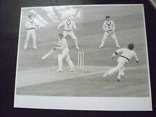Cricket Press Photo-BOB TAYLOR,KIM HUGHES in 1981 Aust. v England 2nd Test Match
