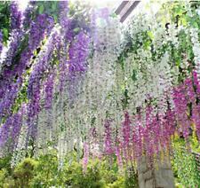 10Pcs Wisteria Flower-Tree Seeds Rare 4 Kinds Color Perennial Garden Home Vine