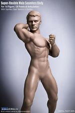 1/6 TBLeague Super Flexible Seamless Male Body Stainless Steel Toy PL2015-M30