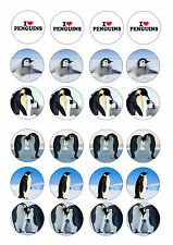 24 icing cake toppers decorations Penguin Penguins Cute birds ND1