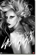2010 LADY GAGA BORN THIS WAY NEW FUNKY POSTER 22x34 FAST FREE SHIPPING