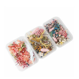 3 Box Craft DIY Mix Making Candle Dried Flowers Epoxy Pendant Handmade Material