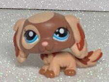 Littlest Pet Shop King Charles #2570 Spaniel Puppy Dog Lps