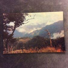 Vintage Postcard - Santo Mountain Trail - New Hebrides - Unused