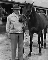Champion Racehorse SEABISCUIT Glossy 8x10 Photo Print Horse Poster