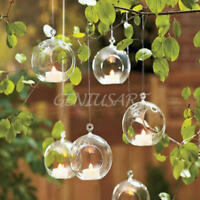 Clear Glass Round with 1 Hole Flower Plant Hanging Vase Wedding Decor