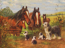 OLD ENGLISH SHEEPDOG WITH PUPPIES AND HORSES CHARMING DOG GREETINGS NOTE CARD