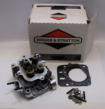 Briggs 557133 World Formula Cylinder Head Assembly with Head Gasket