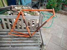Single Speed Road Bike Lugged Steel Frame Vintage Retro