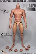 """ZC Toys 1/6 Male 12"""" Strong Muscular Figure Body Doll Plastic Seamless Arms Doll"""