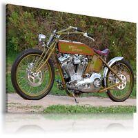 HARLEY DAVIDSON  MOTOR BIKE GREEN Wall Canvas Picture ART  HD21 MATAGA