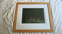 Rare Giraffes Browsing - Kenya by Rolf Harris (Framed Limited Edition Print)
