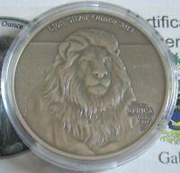 Gabun 1000 Francs 2013 Tiere Löwe 1 Oz Silber