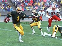 CFL HOF Warren Moon Edmonton Eskimos Game Action Color 8 X 10 Photo Picture